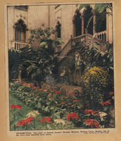 Newspaper photograph of Isabella Stewart Gardner Museum courtyard with poinsettias
